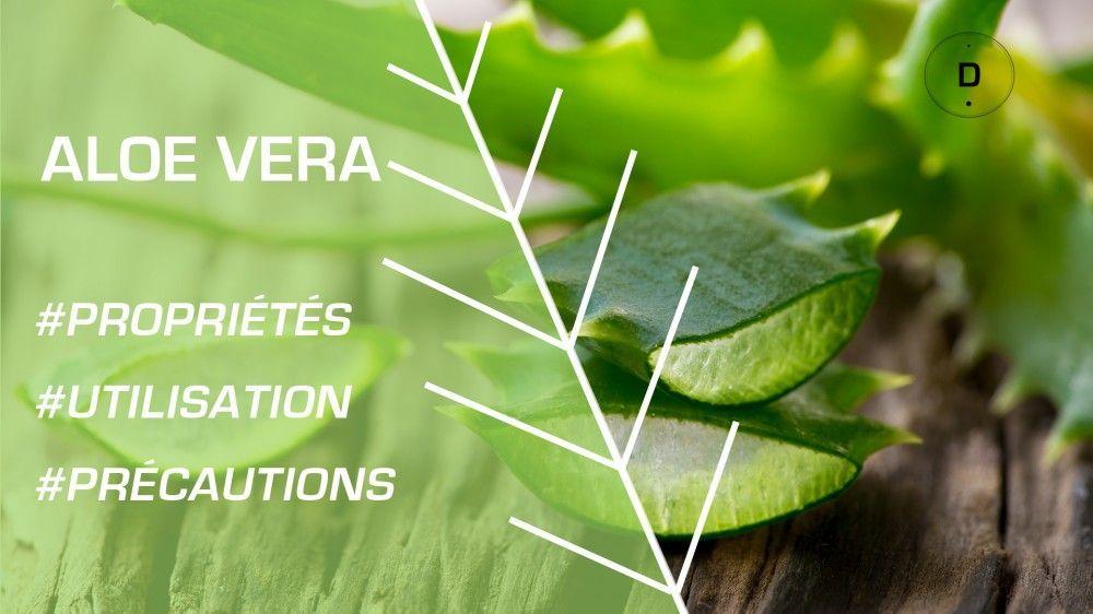 Phytothérapie - Comment utiliser l'aloe vera ?