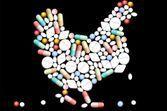 Médicaments pour les oiseaux