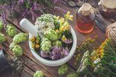 L'usage des plantes médicinales