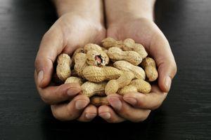 Patch prometteur contre l'allergie à l'arachide et à d'autres aliments