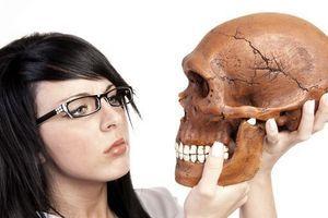 Dépression, addiction, allergies... sont l'héritage de Neandertal