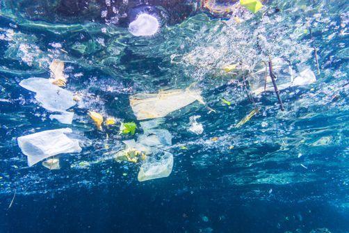 Des microplastiques issus du trafic routier jusque dans les océans selon une étude