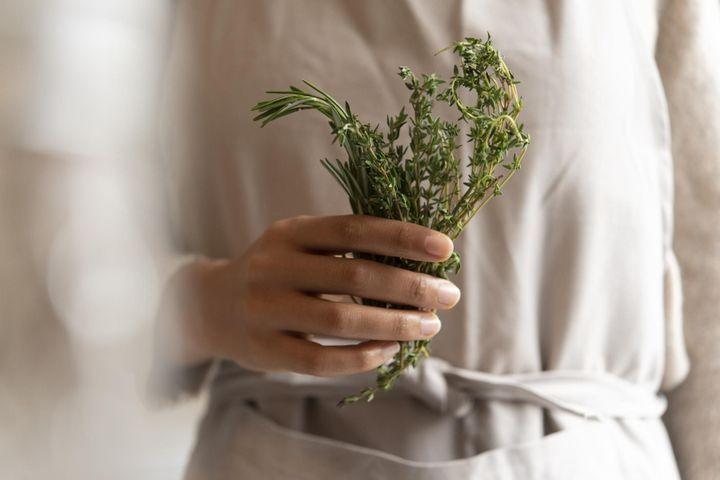 La phytothérapie contre les rhumatismes