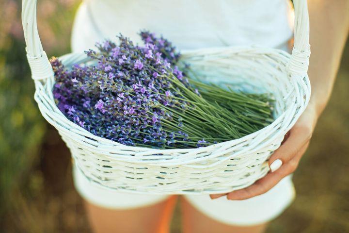 Soulager le syndrome prémenstruel par la naturopathie