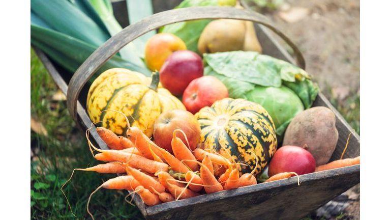 Connaissez-vous bien les légumes anciens ?