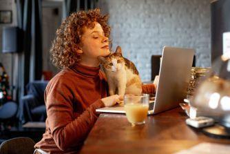 Comment calculer l'âge du chat en âge humain ?