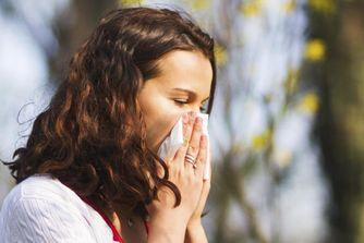 Conseils utiles pour combattre les allergies