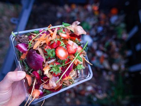 Quels déchets alimentaires mettre au compost ?