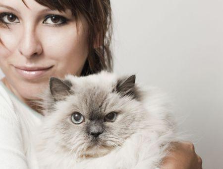 Choisir une mutuelle d'assurance pour mon chat