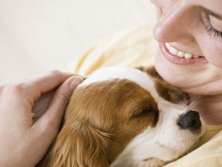Comment calmer son chien ?