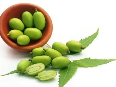 L'huile de neem, contre les infections cutanées et les poux