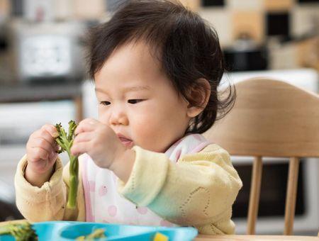Diversification alimentaire menée par l'enfant : pourquoi cette nouvelle tendance ?