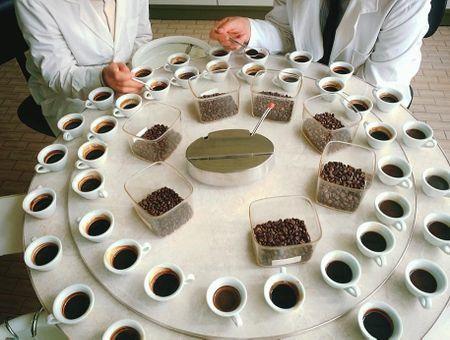 La vérité sur le café !
