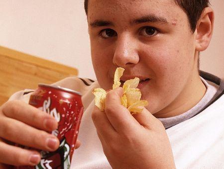 Aux sources de l'obésité