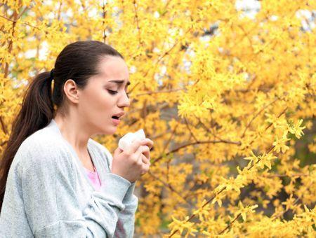 Calendrier des allergies : quels mois pour quel pollen ?