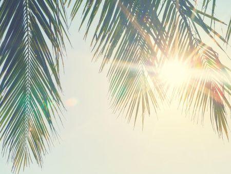Les 10 bienfaits du soleil pour la santé