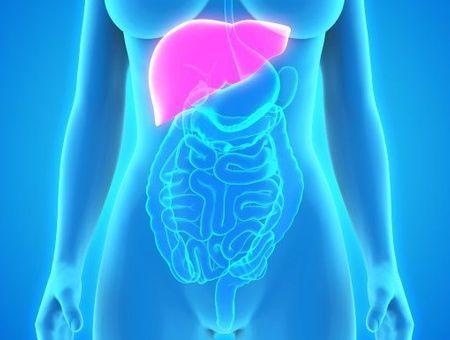 Le cancer secondaire du foie