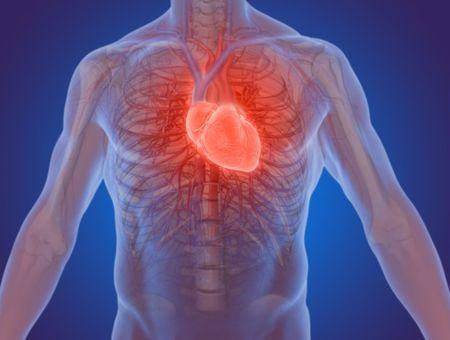 Infarctus : apprenez à reconnaître les symptômes d'une crise cardiaque