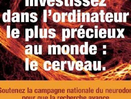 Un Français sur dix touché par une maladie du cerveau - Neurodon 2008