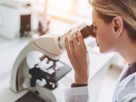 Recherches médicales contre l'ulcère