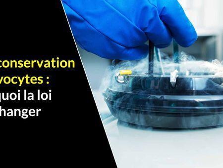 Autoconservation des ovocytes : pourquoi la loi doit changer