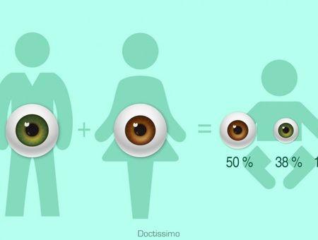 Quelle sera la couleur des yeux de votre futur bébé ?