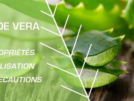 Comment utiliser l'aloe vera ?