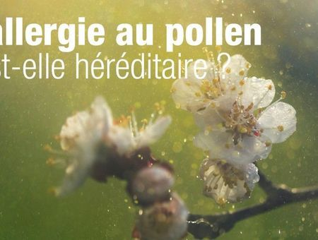 L'allergie au pollen est-elle héréditaire ?