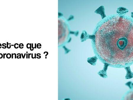 Qu'est-ce que le coronavirus ?