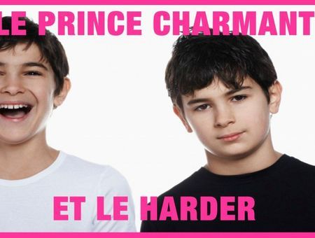 Le prince charmant et le harder (Sylvain Mimoun)