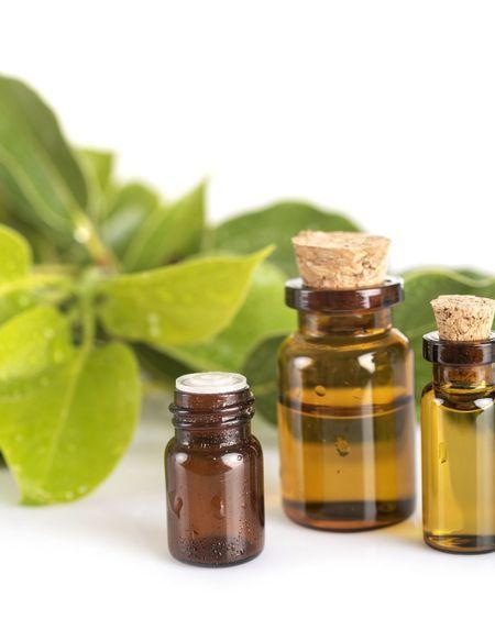 Comment utiliser l'huile essentielle de ravintsara ?