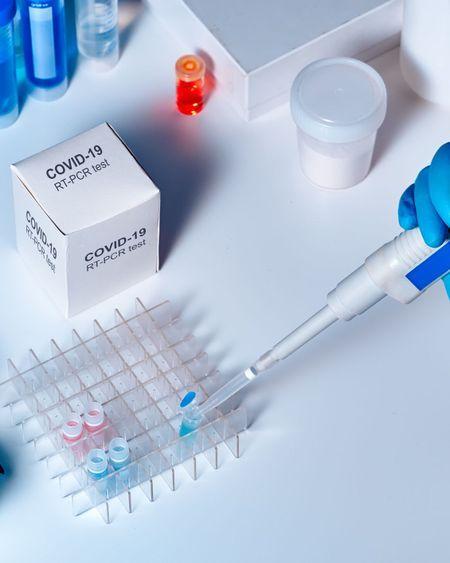 Coronavirus : résultats encourageants d'un antimicrobien sur des animaux