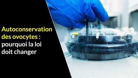 Autoconservation des ovocytes
