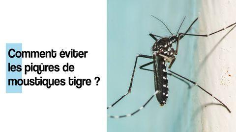 eviter-piqures-moustique-tigre