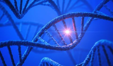 maladies-genetiques-modes-de-transmission