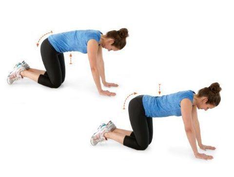 Antéversion/rétroversion du bassin avec mouvement vertébral - 10 exercices qui soignent