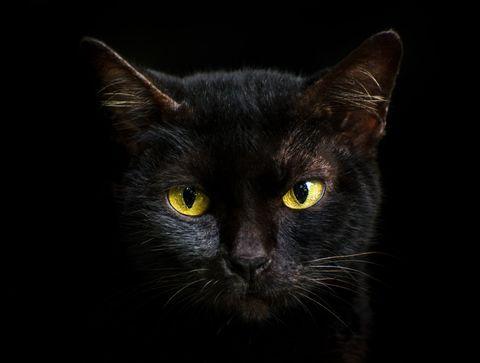 Etes-vous trop superstitieux ?