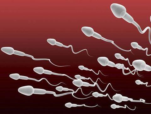 Combien compte-t-on de spermatozoïdes dans une éjaculation ? - Le sperme en 10 questions
