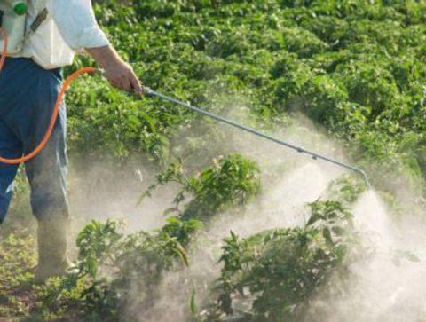 Pesticides et cancers : les résultats d'AGRICAN