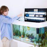Choisir son aquarium