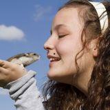 Conseils pour bien choisir son hamster