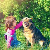 Rôles de l'animal pour l'enfant