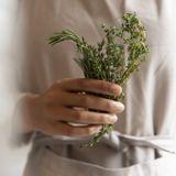 Les plantes contre les douleurs articulaires