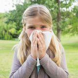 Le réchauffement climatique augmente les allergies