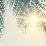 Les 10 bienfaits du soleil