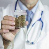 Tout savoir sur le cannabis médical