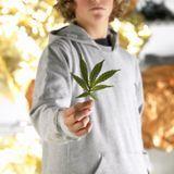 La réalité du cannabis en France