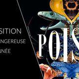 Poison, l'exposition la plus venimeuse de l'année