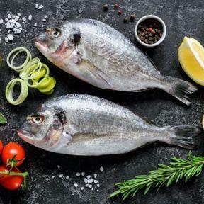 Poiscaille, la promesse d'un poisson frais