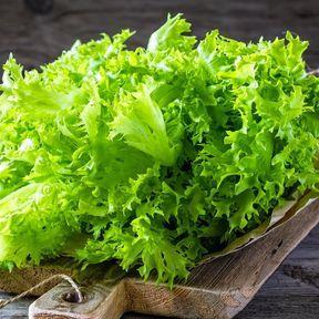 Placez une feuille d'essuie-tout dans les salades en sachet